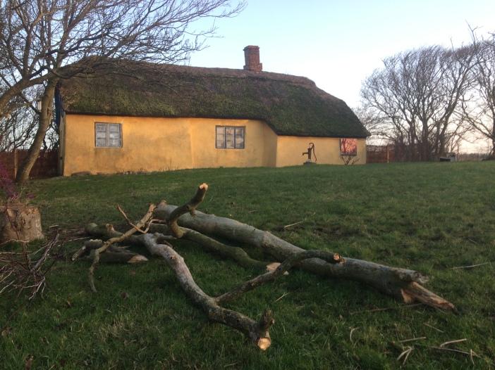 geel boerderijtje met rieten dak