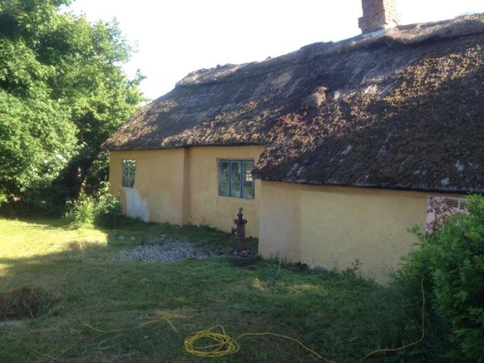 2018-06-05 08.20.10 Gras gemaaid langs het huis met de nieuwe maaier
