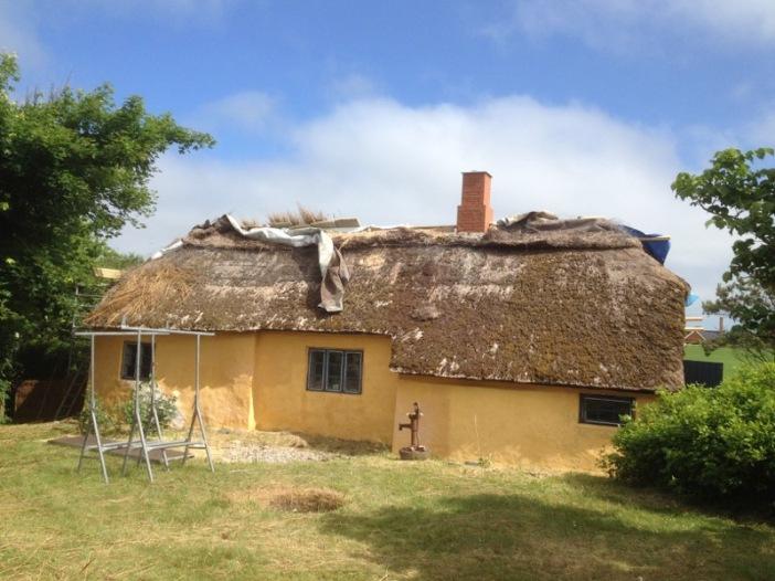 2018-06-12 10.40.40 De troosteloze zuidkant van het dak krijgt nog een zonnetje