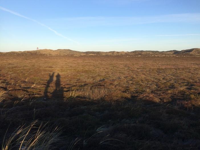 Heide bij Stenbjerg