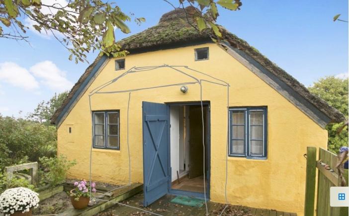 Geel boerderijtje, rieten dak, platteland