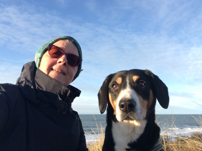 Entlebucher Sennenhond, westkust Denemarken