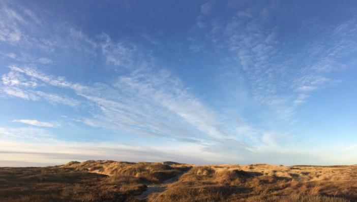 Duinen Lodbjerg