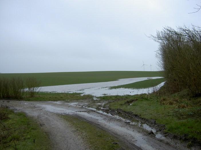 ondergelopen weiland na veel regen