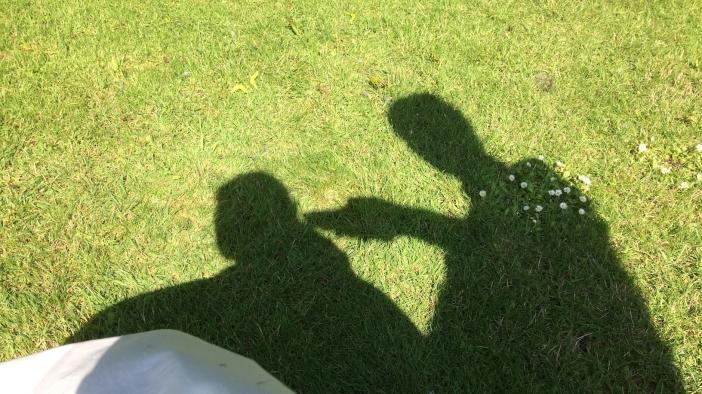 scheren in de zon