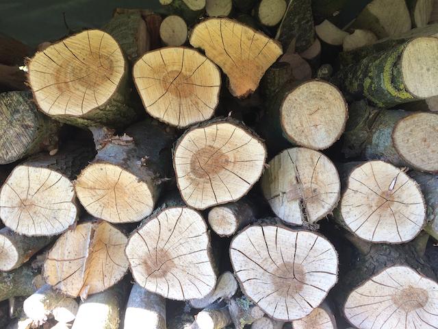 gebarsten hout